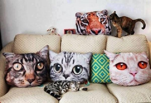 chat décoration