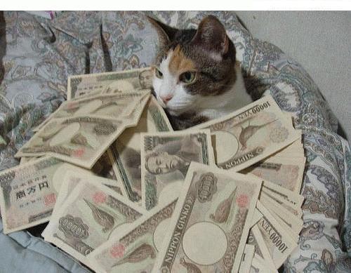 chat riche