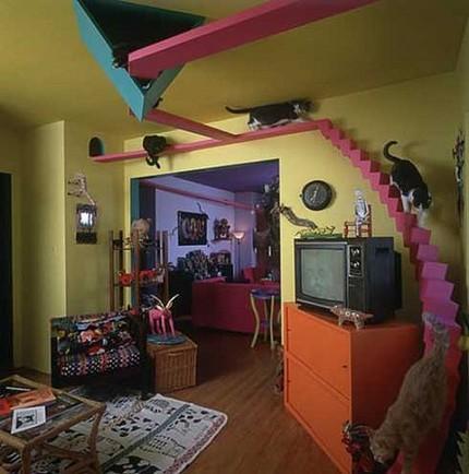 maison pour chat chat dr le sur chat. Black Bedroom Furniture Sets. Home Design Ideas